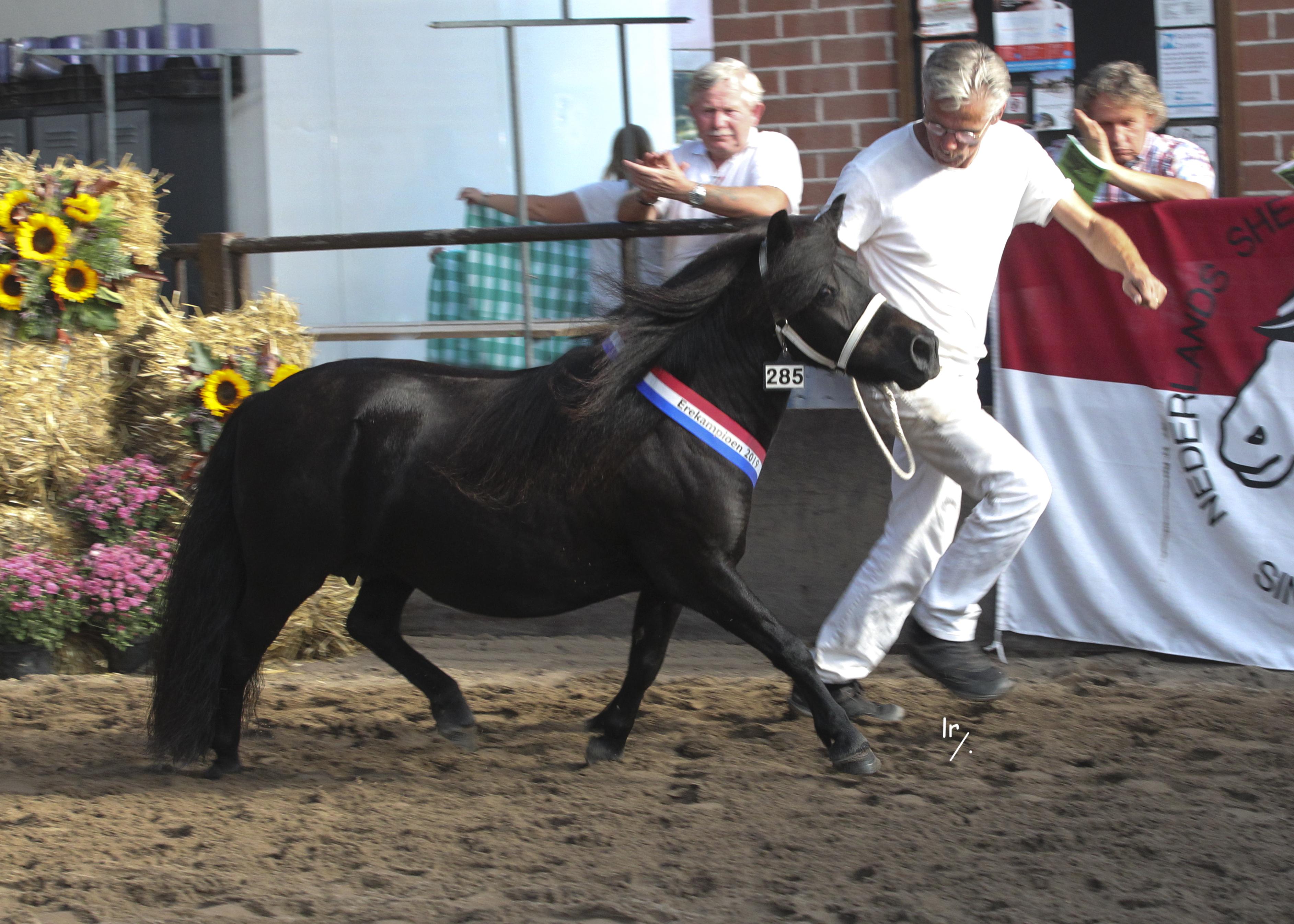 Bobinette Kampioen